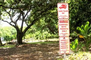 Maui Camper and Van Rentals Camping Info Img02